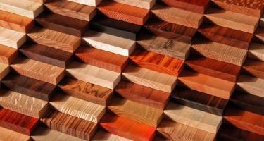 Деревянная мебель. Какую породу дерева лучше выбрать?